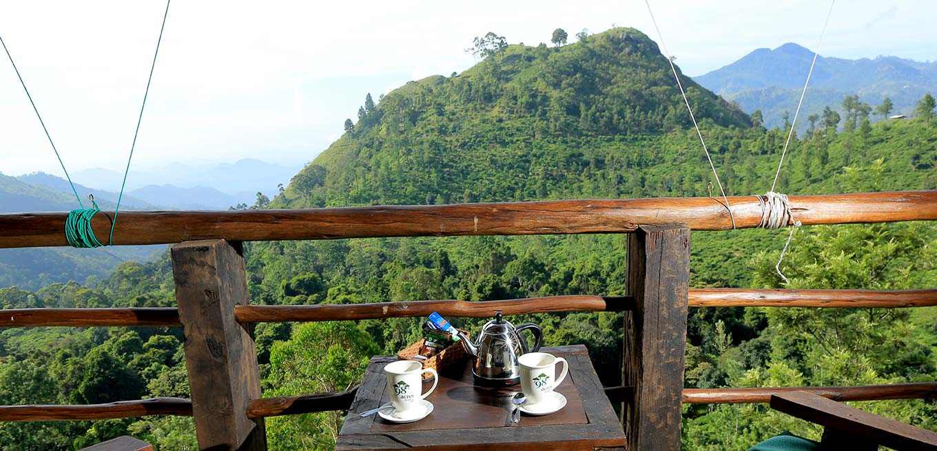 Tea at the Terrace of 98 Acres Resort