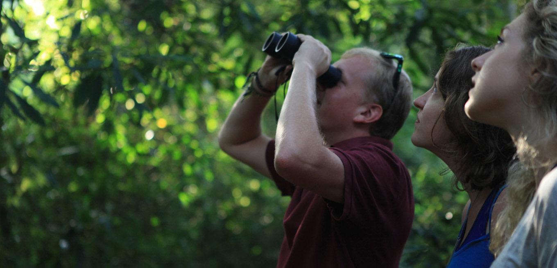 Birdwatching @ Armidale Visitor Information Centre
